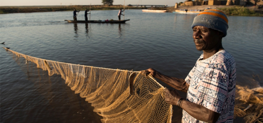 Fisherman in Mongu Harbor, Zambia - Photo: Anna Fawcus, courtesy of WorldFish