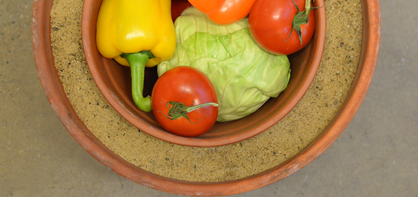 Vegetables in a clay pot evaporative cooling system.