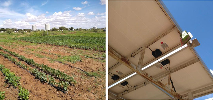 Drip-irrigated vegetable cultivation at Napuu 1 Drip Irrigation Scheme in Lodwar, Kenya (left), and a SweetSense gateway mounted on solar PV panels that transmits solar irrigation pump usage data to an online server via cellular or satellite data (right).