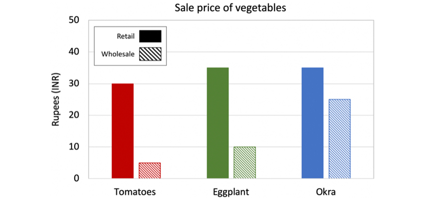 Average selling price of commonly grown vegetables in wholesale and retail markets (sample size n = 8)