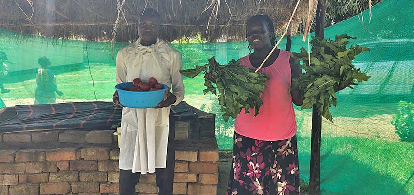 Chef Nicholas Edwaru (left) and Betty Ikalany of TEWDI Uganda and AEST with fresh vegetables that have been stored in the brick evaporative cooling chamber.