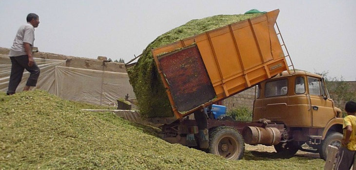 Financial Inclusion harvest truck Morocco.
