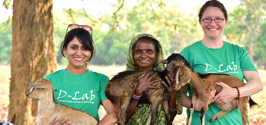 Livestock Improvement: goat herder project Odisha, India.