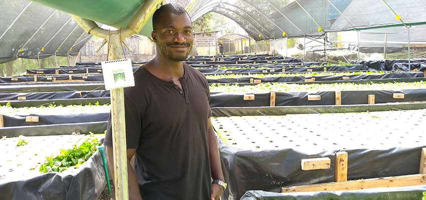 Emmanuel Biketi, Horticulture Manager at Kikaboni Farm in Olooloitikosh, Kenya with an Upande temperature and relative humidity IoT device.