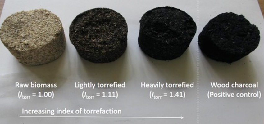 Formulation of cooking fuel from torrefied biomass.
