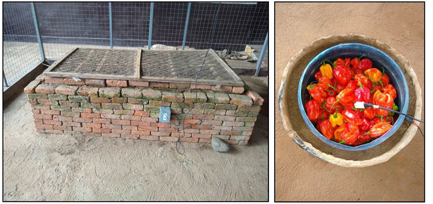 A brick Zero Energy Cooling Chamber (left) and a clay pot cooler (right) in Rubona, Rwanda.